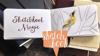 Sketchbook Magic I: Start and Feed a Daily Art Practice