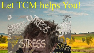 Feeling Stress, Anxiety & Depression? Let TCM help you!