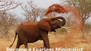 Become a Fearless Minimalist - Discover the Fantastic Power of Frugality