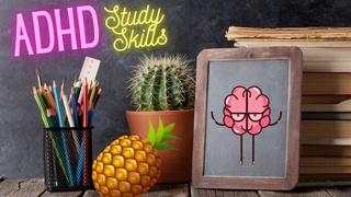 ADHD Study Skills For High School, College, & Grad School