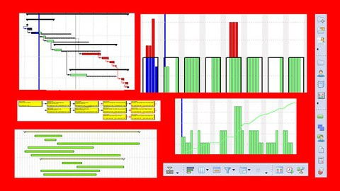 Planning & Control with Oracle Primavera P6 PPM Professional
