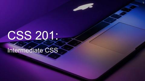 CSS 201