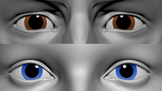 Painting Eyes For Characters Fast In Zbrush Search