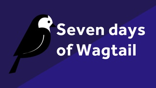 7 days of wagtail